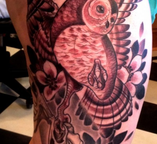 Black and Grey Owl on Leg